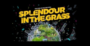 Splendour in the Grass 2012; Our Picks
